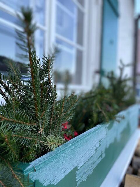 Winter-Blumenkasten-Tannenzweige-Frost-Angst-Panik-Kinderwunsch-ungewollt kinderlos-Ferber-Kindersehnsucht