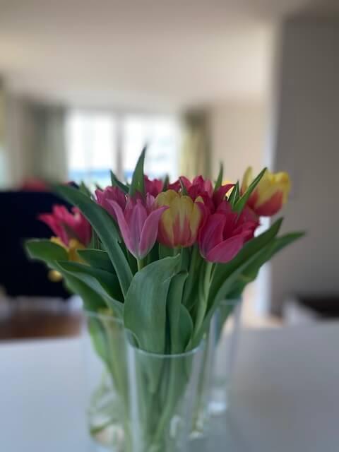 Tulpen-Tisch-Franziska Ferber-Kinderwunsch-Rat-Erfahrungsbericht-Hilfe-traurig-Online Kurs
